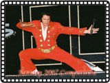 Contact Crazy Wolf Entertainment to book Steve Roberti Elvis Tribute Artist