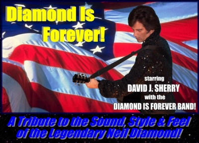 DIAMOND IS FOREVER BAND - DAVID SHERRY